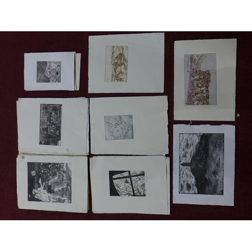 311 - Patricia Wright (British, 1919 - 2019), Thirty etchings of various subjects, some signed titled and ...