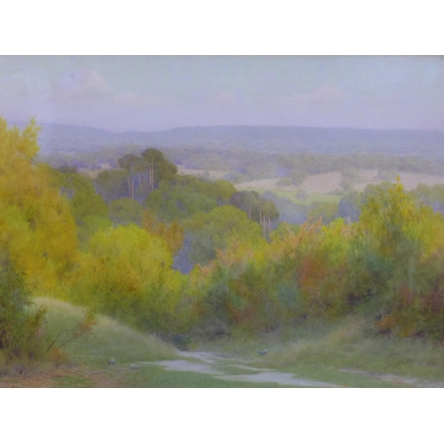 7 - Frederick Williamson (fl.1856-1900),  A talented landscape painter of meticulous technique. He exhib...