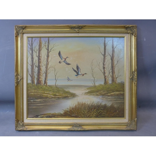 16 - 20th century school, ducks flying over water, oil on board, in gilt frame, 50 x 60cm, damage to imag...