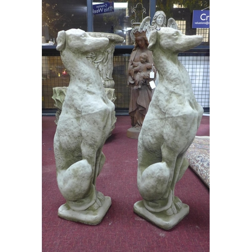 34 - Two reconstituted stone seated greyhounds, on square bases, H.76cm...