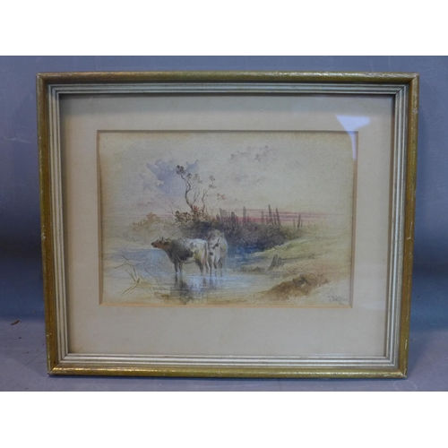 528 - Joseph Watkins, 19th century British school, cattle, watercolour, framed and glazed,  signed and dat...