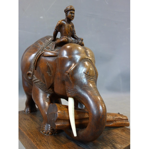 537 - A teak carving of a man riding an elephant picking up a log, with bone tusks, on rectangular teak ba...