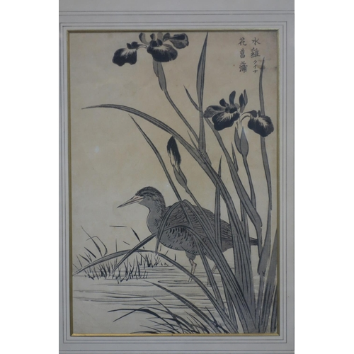 39 - A pair of Chinese woodblock prints representing a pond heron and a lotus leaves, 19th century, frame...