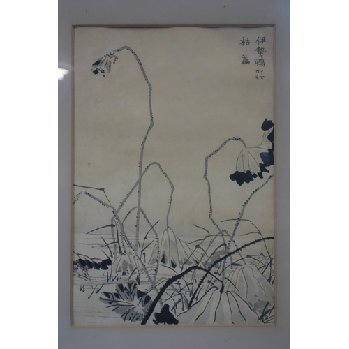 18 - A pair of Chinese woodblock prints representing a pond heron and a lotus leaves, 19th century, frame...