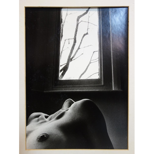 139 - Trevor Watson, Nude lady, photographic print, signed in pencil to mount, stamped 'Copyright, Trevor ...
