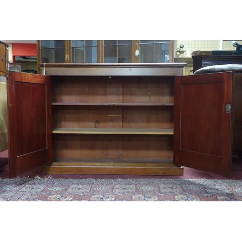 371 - A 19th century mahogany hall cupboard, H.102 W.133 D.39cm...