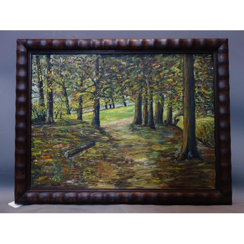 126 - J. Vermoelen (1905-1997), Forest view, oil on canvas, signed lower right, 41 x 54cm...
