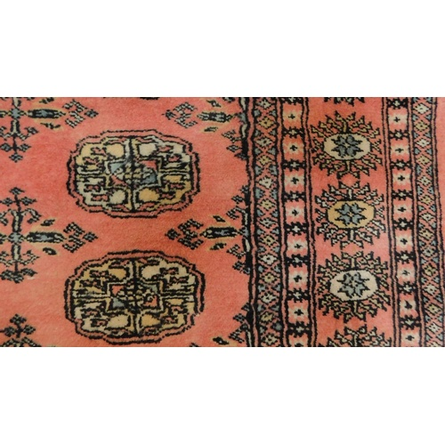 238 - A bokhara rug on a rouge ground. L.268 W.190cm...
