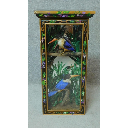 51 - A pair of taxidermy Black Capped Kingfishers in a naturalistic setting. Housed in a wooden hand pain...