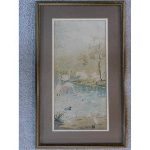 288 - A framed and glazed watercolour, flamingos in a pond, by Y. Toppouzzade. 52x32cm...