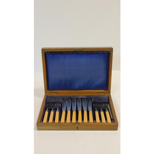11 - A set of silver plated, bone handled fish knives and forks in a fitted oak case. 25x34cm...