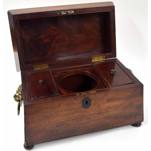 562 - Victorian mahogany sarcophagustea caddy, with twin lions head ring handles, the hinged cover enclos...