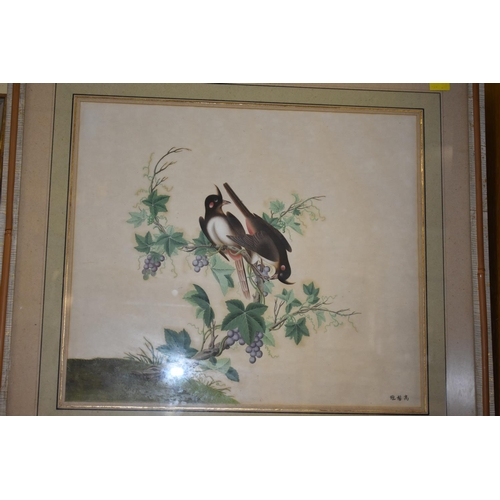 629 - <strong>Chinese School,</strong> 19th century, two birds on a vine, signed, gouache, 36 x 42cm....