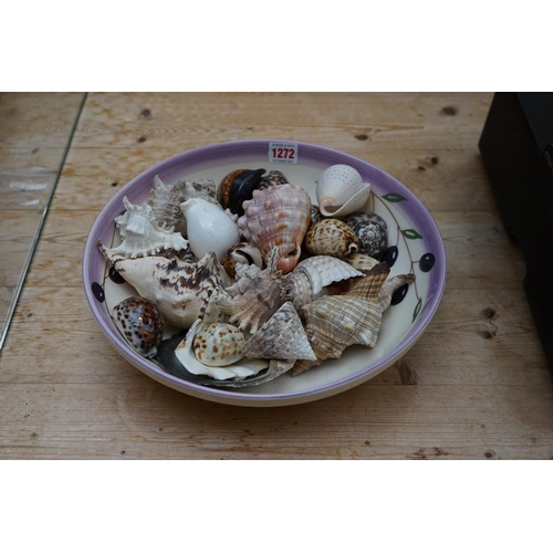 1272 - <strong>A small collection of seashells,</strong> in pottery bowl....