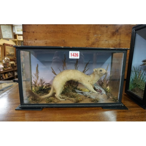 1426 - <strong>Taxidermy:</strong> a Stoat and Chaffinch, in a glazed case, 20 x 36cm....