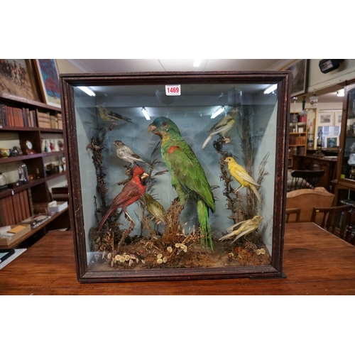 1469 - <strong>Taxidermy:</strong>a display of eight birds, in a glass fronted case, 46 x 48cm....