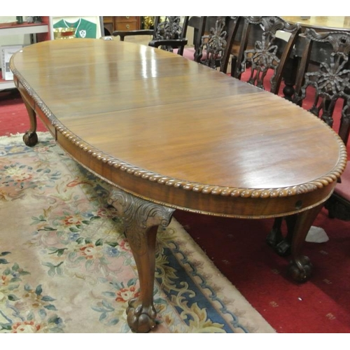50 - Edwardian design D-end mahogany dining table with rope edge border, two leaves inset, raised on scro...