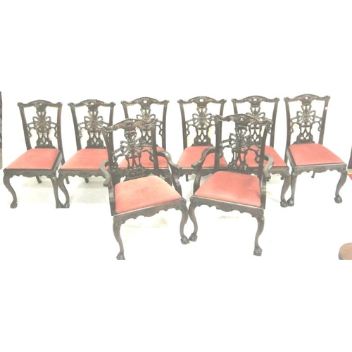 245 - Set of 8 Chippendale design mahogany dining chairs with ornate ribbon splats, scroll and foliate car...
