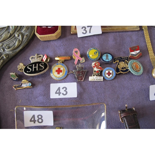 43 - Selection of enamel pins and badges...