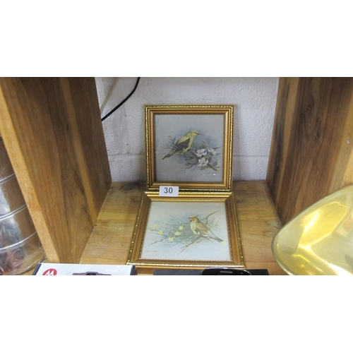 30 - 2 framed and glazed bird prints...