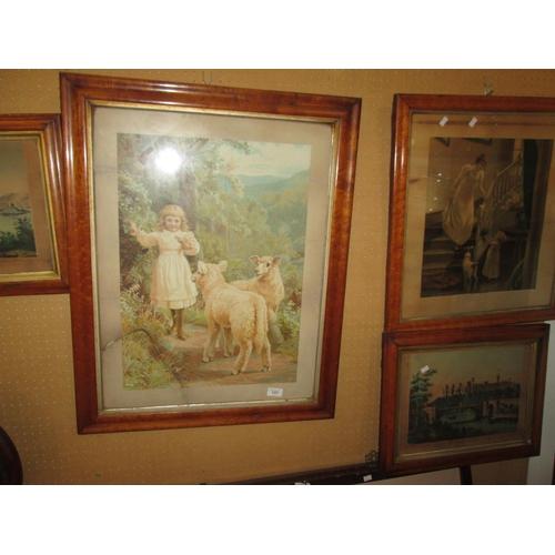 177 - 4 x Victorian maple wood framed prints...