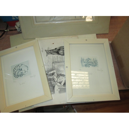720 - Various prints, some mounted, some framed and glazed, local and other interest...