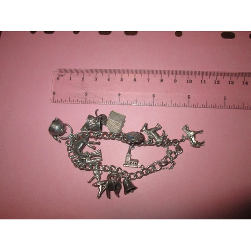 5 - Silver charm bracelet with 12 assorted charms 38 g...