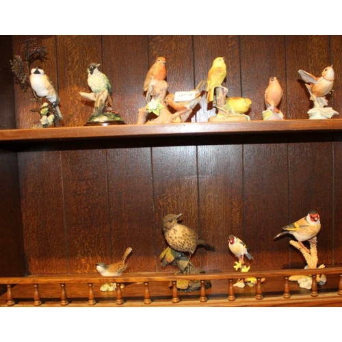 54 - TWO SHELVES CONTAINING A SELECTION OF MODEL BIRDS, to include Royal Worcester examples and Country A...