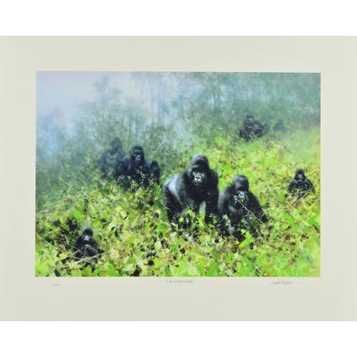 30 - DAVID SHEPHERD (1931-2017), 'In the Mists of Rwanda' a limited edition print 12/250 of a troop of Go...