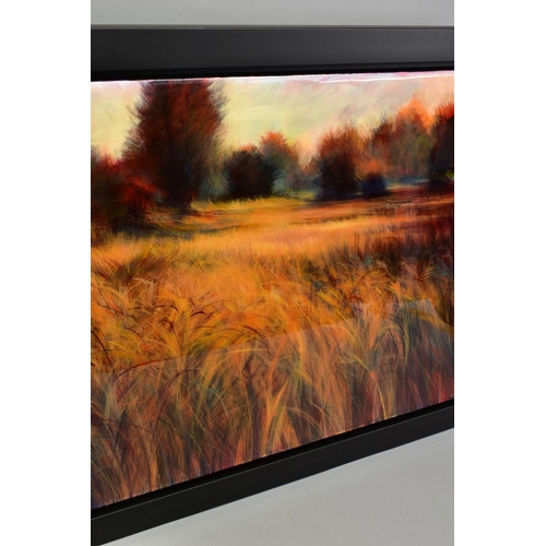 321 - NICK ANDREW (BRITISH 1957) 'LACAPREA', an impressionist view across a field, signed bottom right, si...