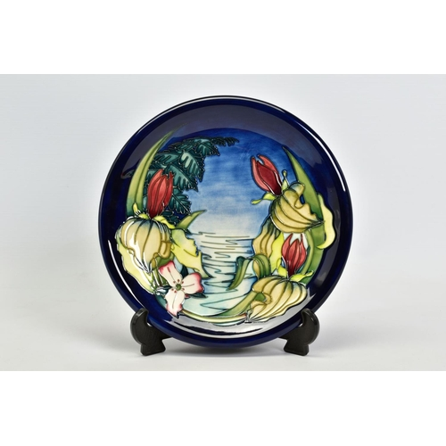 417 - A BOXED MOORCROFT POTTERY PLATE, 'Sweet Betsy' pattern on blue ground, impressed backstamp, painted ...