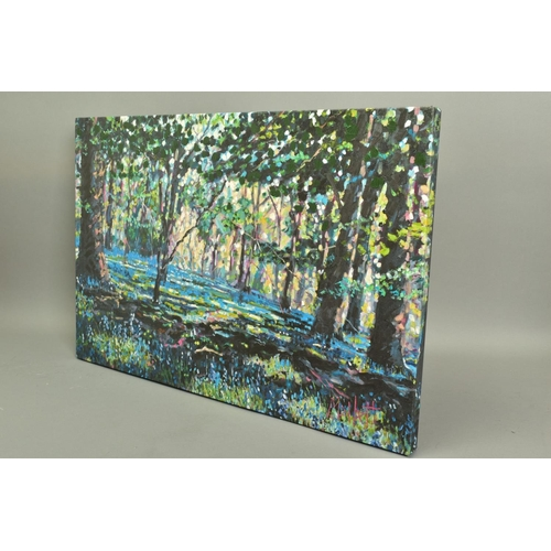 26 - TIMMY MALLETT (BRITISH CONTEMPORARY) 'Bluebell Shadows', an artist proof print of a woodland scene, ...