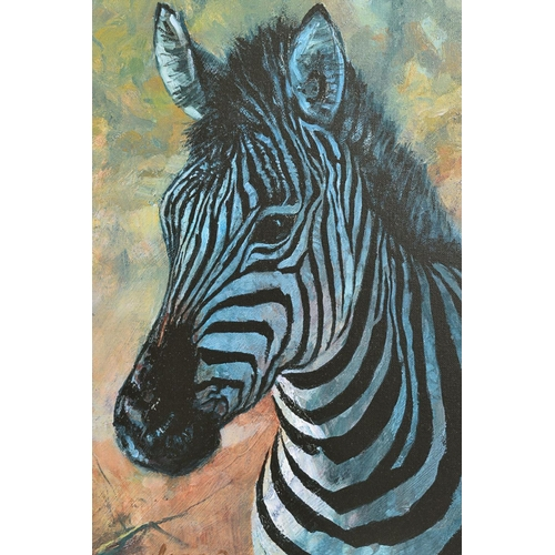 31 - ROLF HARRIS (AUSTRALIAN 1930), 'Young Zebra', a Limited Edition print, 91/195, signed top right with...