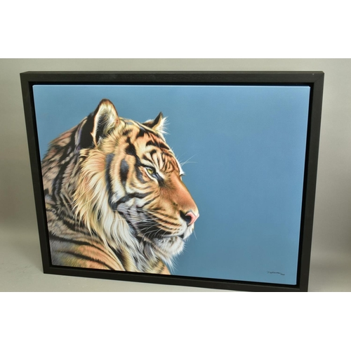 50 - DARRYN EGGLETON (SOUTH AFRICA 1981), 'The Sentinel', an artist proof print of a Tiger, 16/20, signed...