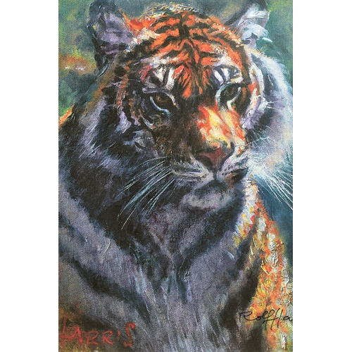 7 - ROLF HARRIS (AUSTRALIAN 1930), 'Tiger in The Sun', a Limited Edition print, 100/95, signed bottom ri...