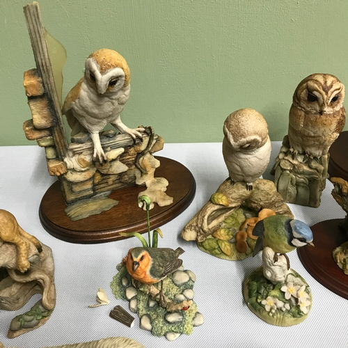 103 - A Collection of Teviotdale animal figurines, Includes Owls, Sheep dogs, Mouse with poppy and Cheetah...