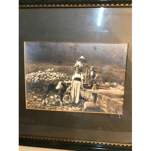 241 - Three early 1900's photographs framed....