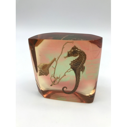 27 - Vintage Lucite seahorse paperweight....