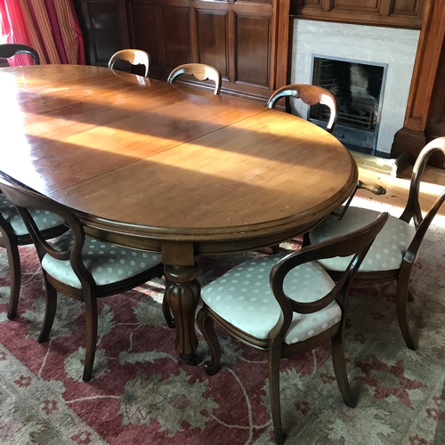 484D - A Large Victorian boardroom table in Mahogany, comes with three leafs and 10 Victorian balloon back ...