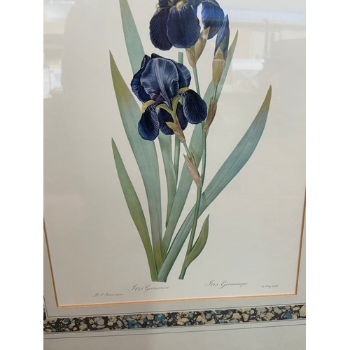 21 - A Lot of 5 original flower prints after P.J.Redoute....