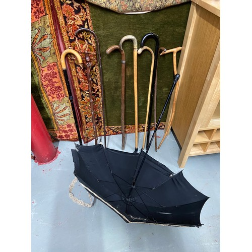449C - A quantity of walking sticks and parasol...