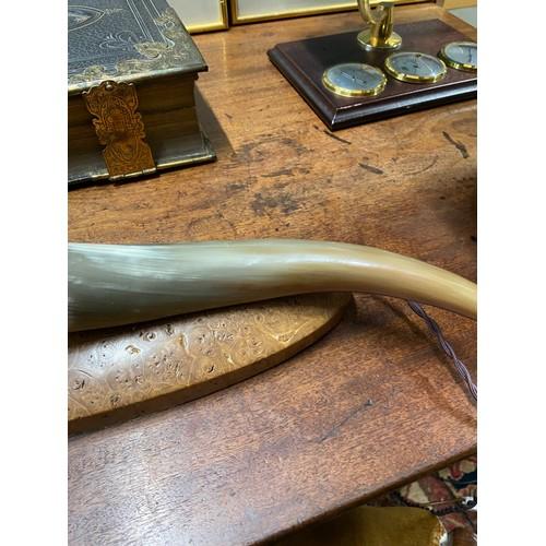 439 - A Bull horn table lamp sat on a bur walnut base...