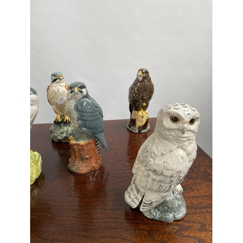 108 - A Collection of 7 Royal Doulton bird figurines to include Osprey, Hawk & Tawny owl etc...