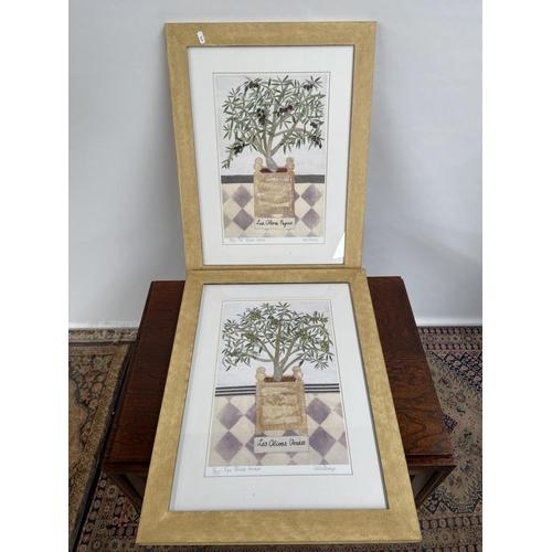 116 - Two limited edition prints after Willemien Stevens titled 'Las Olivas Negras & Las Olivas Verdes' Bo...
