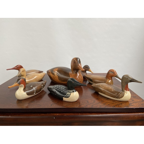 132 - A Collection of hand carved wooden duck decoy sculptures by Jim Harkness.