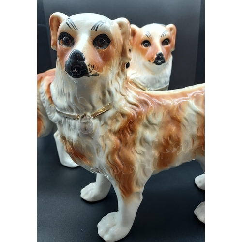 8 - A Pair of Bo'ness pottery mantle dogs with glass eyes. [29cm in height]