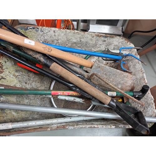 37 - Wheel barrow full of mixed garden tools to include spades, forks etc