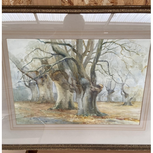 30 - Three Original watercolours, One depicting an Autumn forest signed Murray and two river scenes by E....