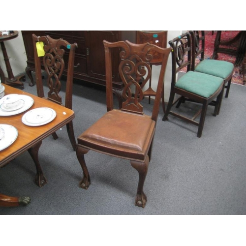 376 - Set of 6 Edwardian Mahogany Dining Chairs in...