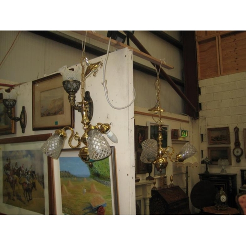 379 - Pair of Brass and Glass 3 Branch Ceiling Lights...